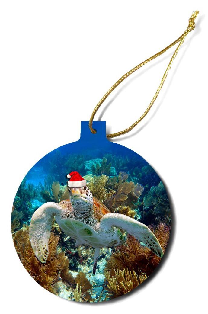 """""""Christmas Turtle 5"""""""