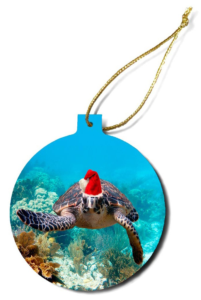 """""""Christmas Turtle 6"""""""