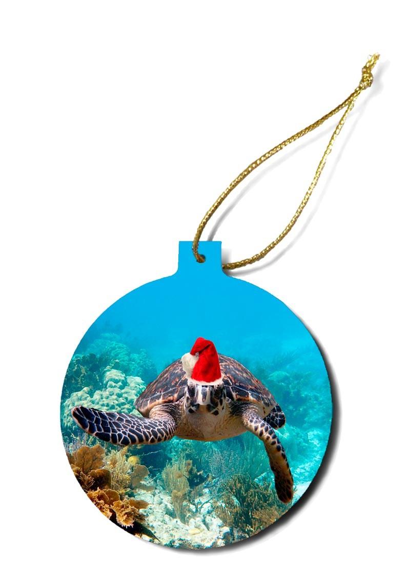"""""""Christmas Turtle 3"""""""