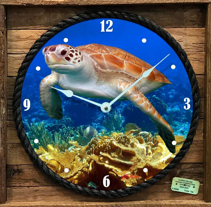 """""""FLYING OVER THE CORALS """" FRAMED CLOCK"""