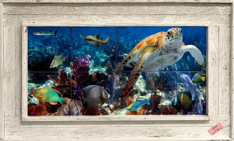 Life on the Reef Tile Mural