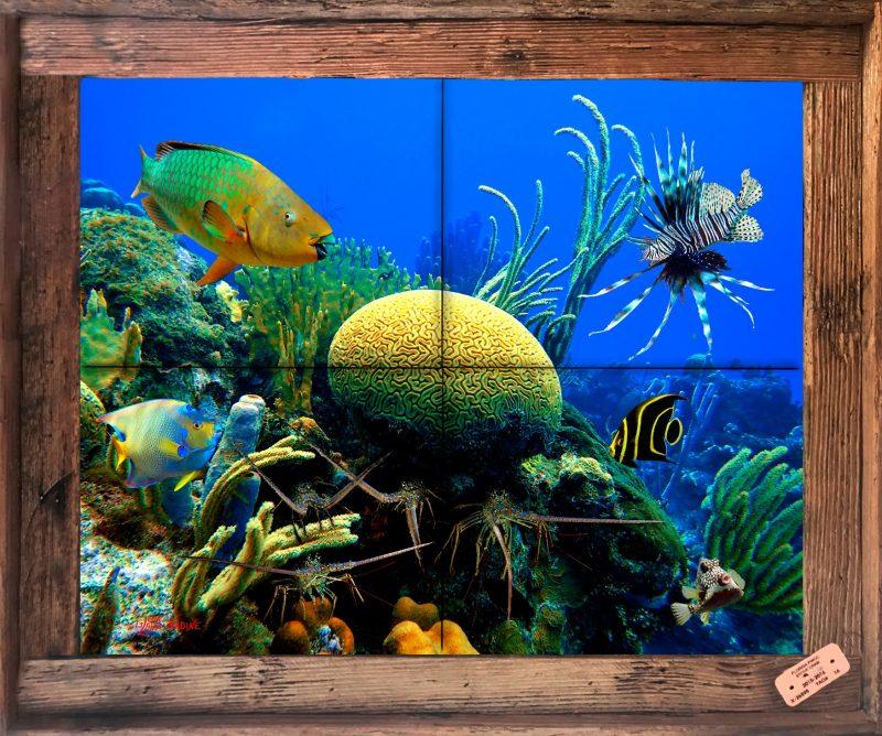 Brain Coral Reef Tile Mural