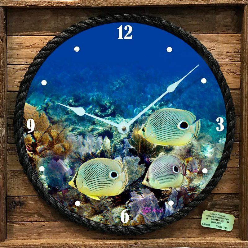 Butterfly Fish Framed Clock