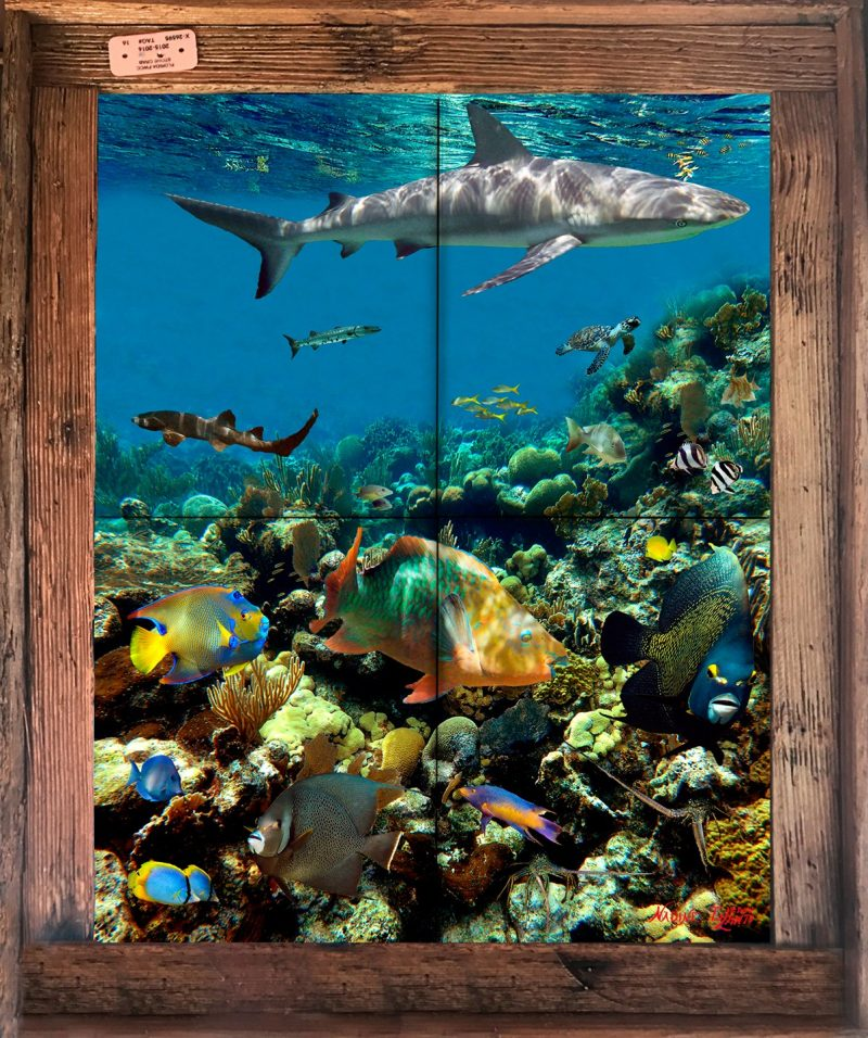 Coral Garden With Shark Tile Mural