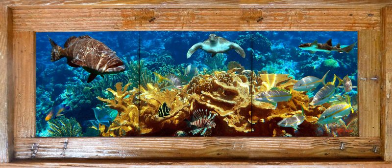 Coral Island Tile Mural