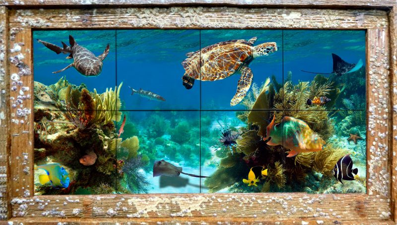 Coral Roadway Tile Mural In a Barnacle Frame
