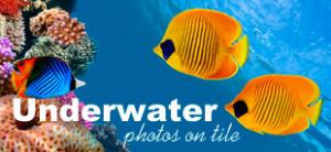 Underwater Tiles
